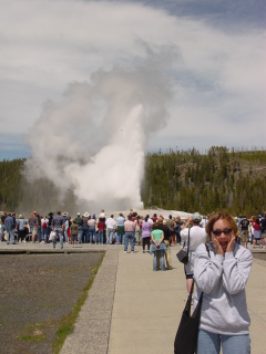Old Faithful erupts at Yellowstone to my complete amazement!