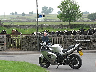 A dichotomy of opposites - motorcycle and cows