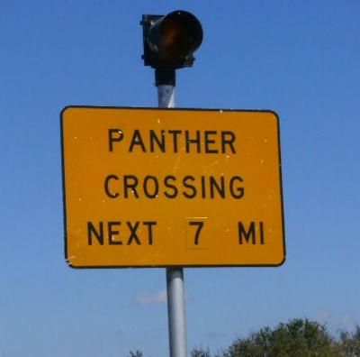 Panther Crossing - next 7 miles