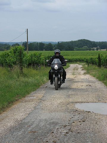 A narrow gravel road in France, outside of St. Emilion